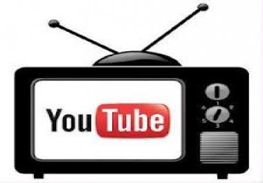 Give you 5100+ Youtube real human views