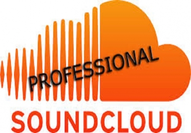 I Want 2000 Soundcloud Followers In Max. 24 Hours