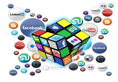Seeking social panel for resale ,  youtube,  twitter,  etc.