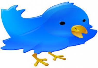 I want 3000 twitter followers in few hrs