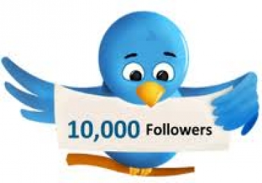 i want to buy 10k twitter followers for