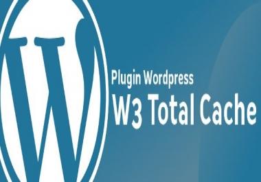 Solve my cdn problem from w3 wordpress plugin