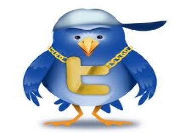 50k real twitter followers