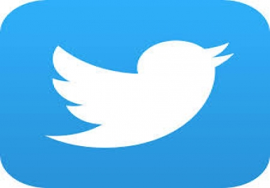 Swedish Twitter Followers