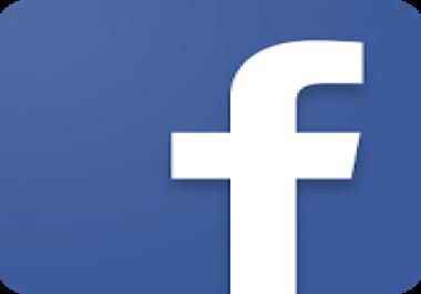FB Social Media Consultation