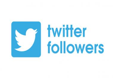 500,000 Twitter follow