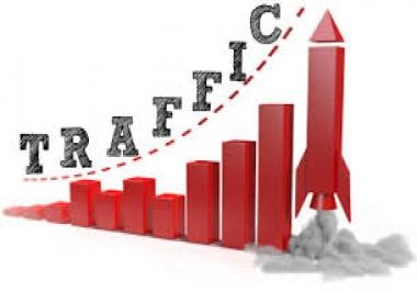 I need real 30000 USA traffic
