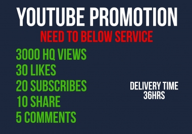 Looking for YOUTUBE promotion for daily orders