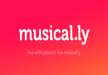 Need working musical. ly panel & other smm panels.