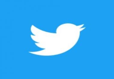 500,000 Twitter subscribers