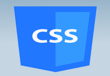 Fix some css related issue