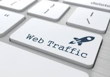 REAL WEBSITE TRAFFIC NO BOT FOR PROPELLERADS