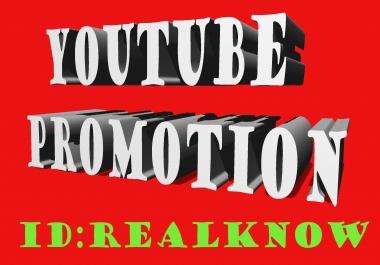 i need 300 non drop gurantee youtube subcribe