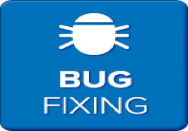 WORDPRESS WEBSITE BUG FIXES