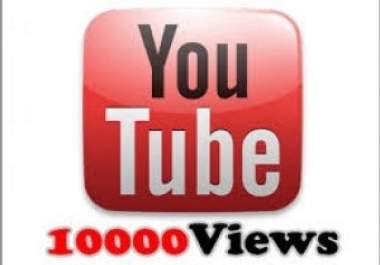 I Really Need Any Non Drop 10000 YouTube Viewers Only