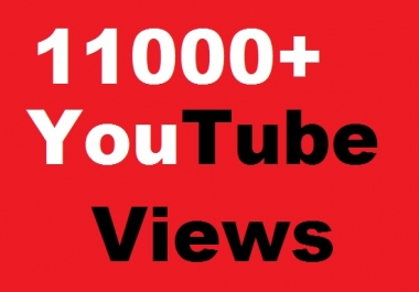 I Really Need Any 11000+ YT Views With Multiple Quantity