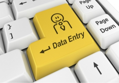 Data Entry Copy and Paste