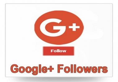 USA Google plus Follower 1k non drop