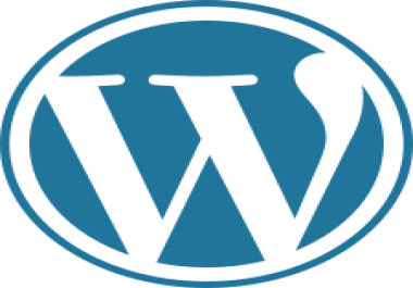 I need 1 professional wordpress website