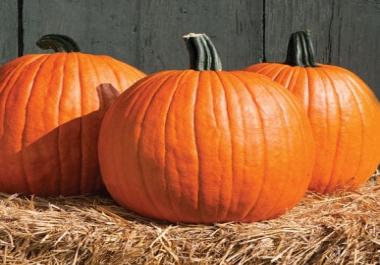 Photoshop in pumpkin
