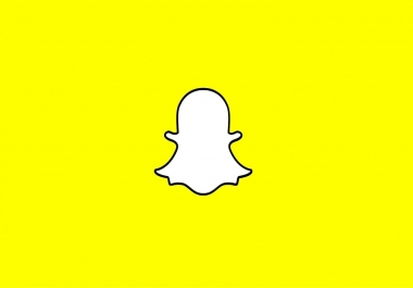 Need Snapchat followers and scores