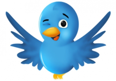 Provide me cheapest Twitter Followers,  I have continuous orders for you