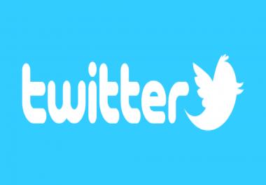 500 Hight Quality Twitter Followers