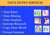 I can do any types of Data Entry for $8