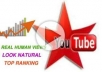 give you guaranteed 10000+ youtube vie ws to your video