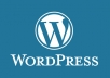 Solve your  WordPress Issues and problems within 24 hours