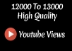 Instant 12000 to 13000 High Quality Youtube Vie ws