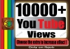 Fast 10000+ Non Drop Adsense Safe HQ and Life Time Guaranty Views for Your Video