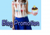promote your product on my blog for $13