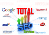 Increasing Site Position using Total SEO Services for $55