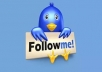 Greatest 30 000+ Twitter Followers Will be Added to Your Account Just