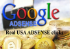 We Send Real 10000+ Adsense Safe Unique Visitors Traffic your website Or Any Link from over the world