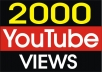 Provide 20000 YOUTUBE Retention Views
