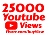 i will add 25,000 High Quality vie ws