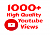 I will add 1000+ High Quality Youtube view
