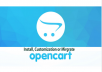 I will install or migrate or customized your opencart for $100