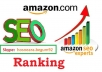 provide unlimited traffic do seo service for amazon ranking
