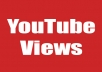 give 500+ Targeted Youtube views from USA Russia India Poland France South Korea Israel Brazil Italy Germany Egypt  Spain And Many More