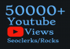I will Add 50,000-60,000+ High Quality Youtube views