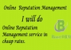 Online Reputation Management for $100