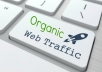 Drive 10,000 Organic traffic visitors to your website in 10 days