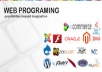Web and Windows Application Development for $10