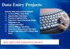 Do data Entry as ur Virtual Assistant upto 3 Hours