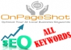 Ongoing Orders Only -Custom Order - Excess Keywords Optimization