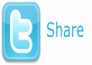 Share Your Link On Twitter, 300posts