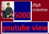 Daily add 5000 youtube views on your video